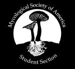 msa_ss_logo_small
